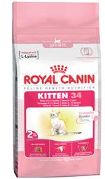 kitten-packshot_web_150px