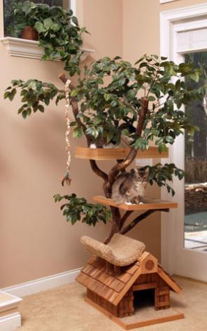 pthmediumtree